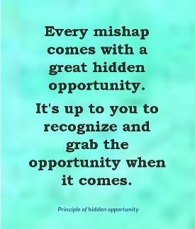 principle of hidden opportunity