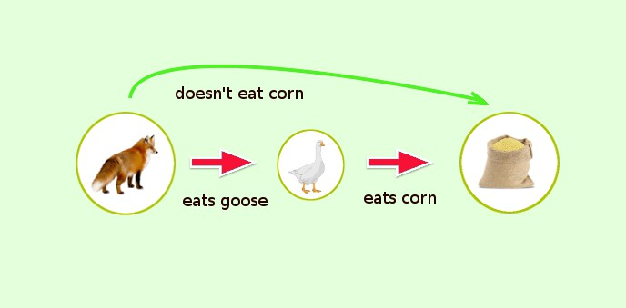 who eats whom